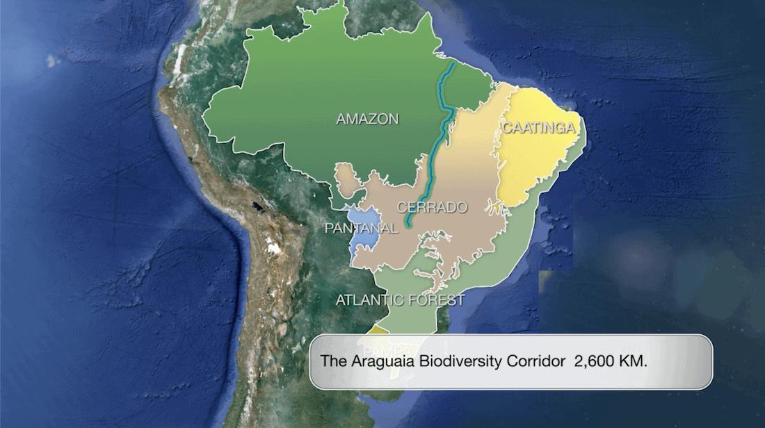 Araguaia Biodiversiteit corridor